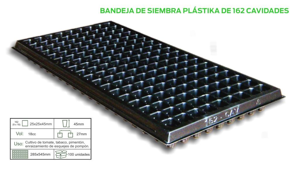 BAND-X-162.jpg