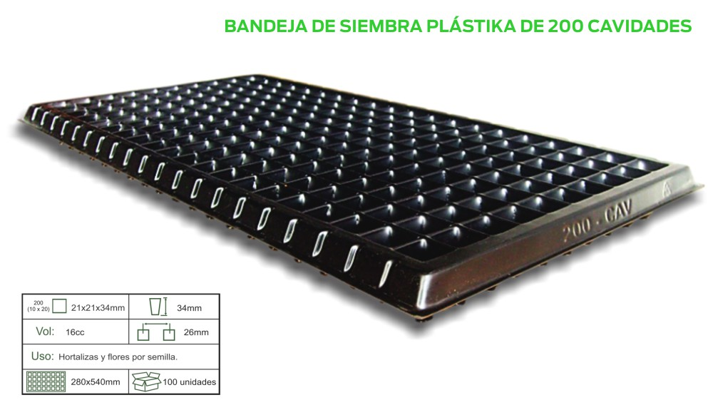 BAND-X-200.jpg