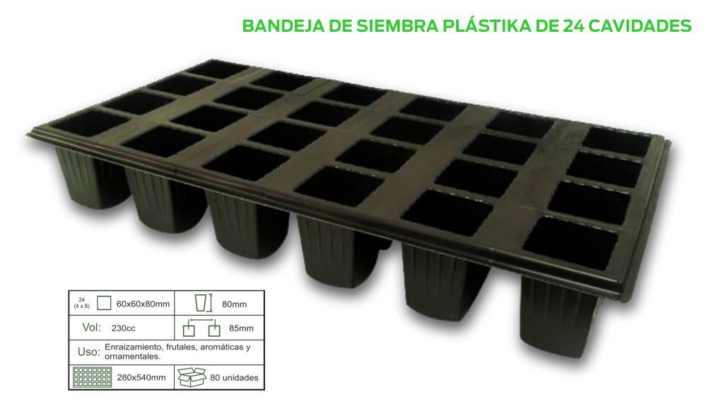 BAND-X-24.jpg