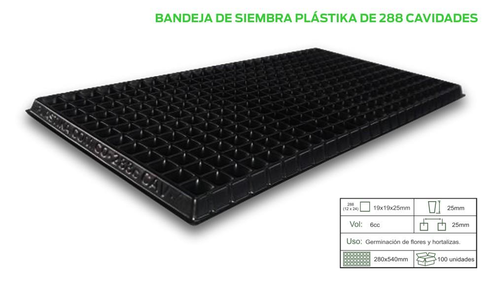 BAND-X-288.jpg
