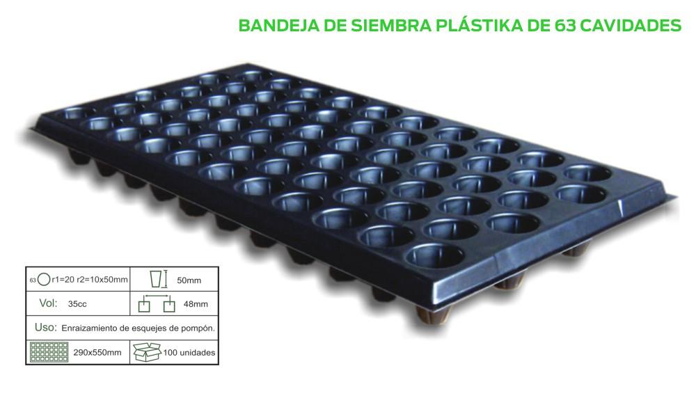 BAND-X-63.jpg